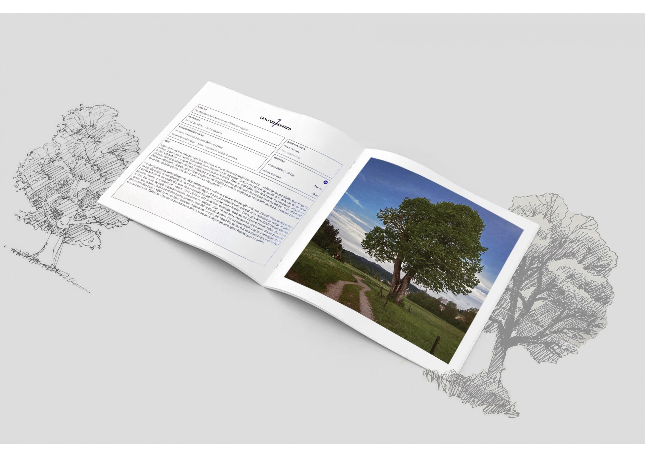 logatec-drevesa-slika-2